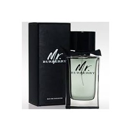 MR BURBERRY MASCULINO EAU DE TOILETTE 100ml